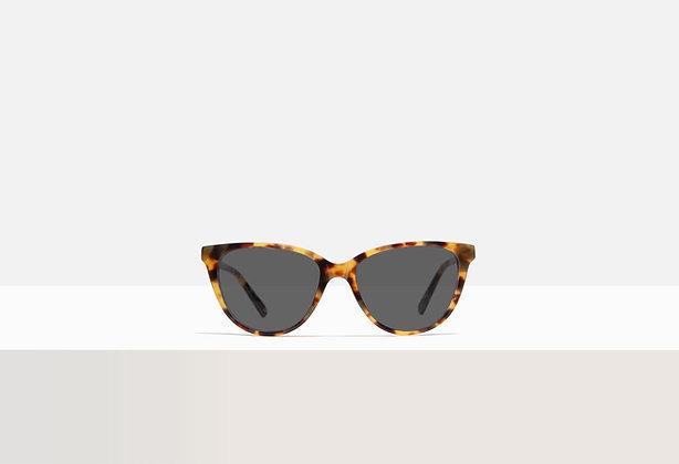 Sunglasses - Kafka in Honey Amber