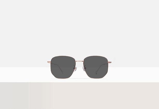 Sunglasses - Miller in Champagne