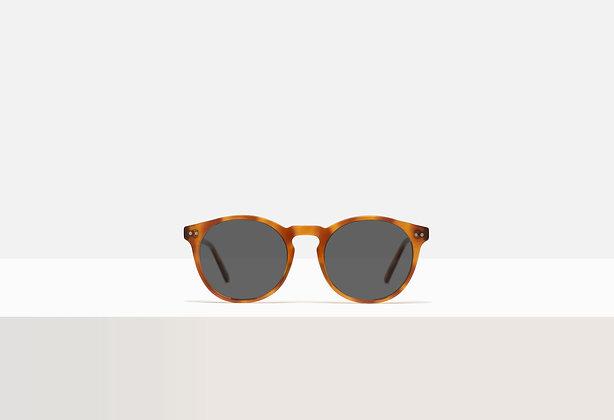 Sunglasses - Salinger in Barn Burning
