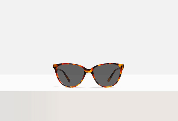 Sunglasses - Kafka in Redder Sorghum