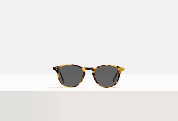 Sunglasses - Deakins in Honey Amber