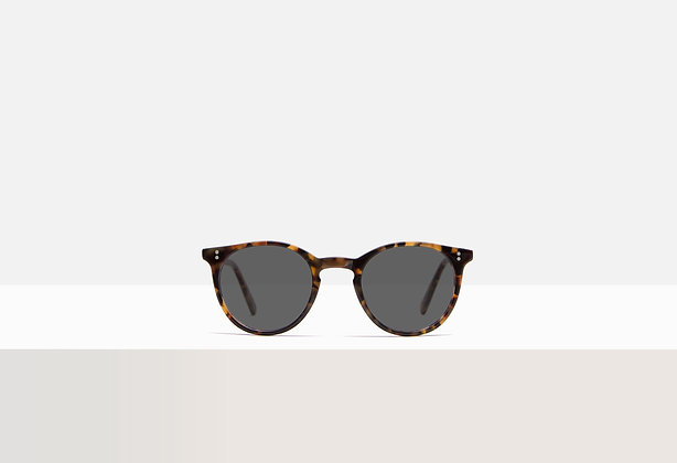 Sunglasses - Hermann in Honey Amber