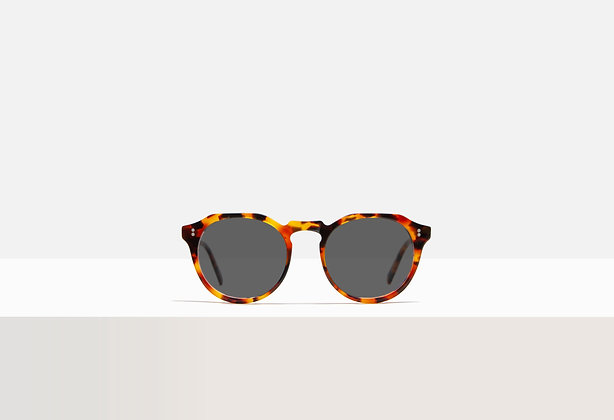 Sunglasses - Faulkner in Red Sorghum