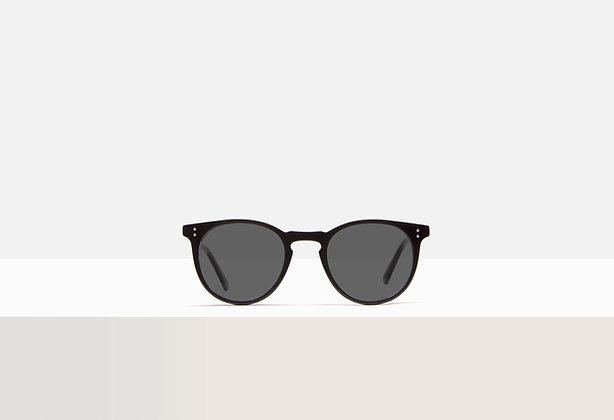 Sunglasses - Franklin in Acetate Black