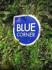 blue corner institut epilation homme paris