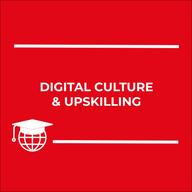 DII - Digital Culture & Upskilling.png