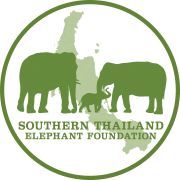 www.southernthailandelephants.org aises funds to support projects that promote elephant health and welfare in Southern Thailand
