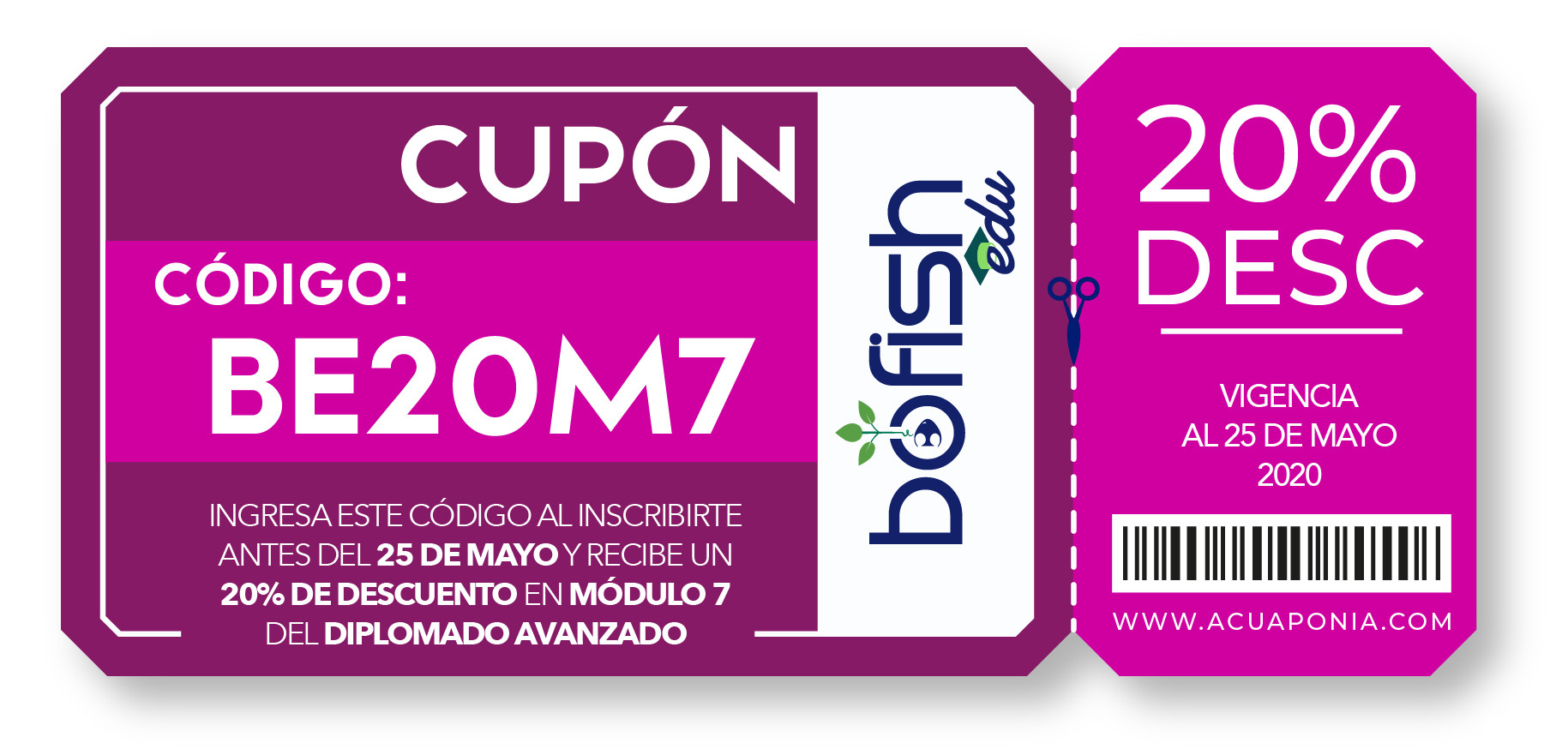 CUPONES BOFISH EDU-34.jpg