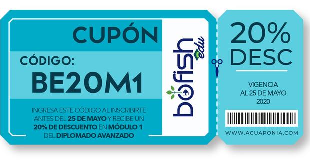 CUPONES BOFISH EDU-16.jpg