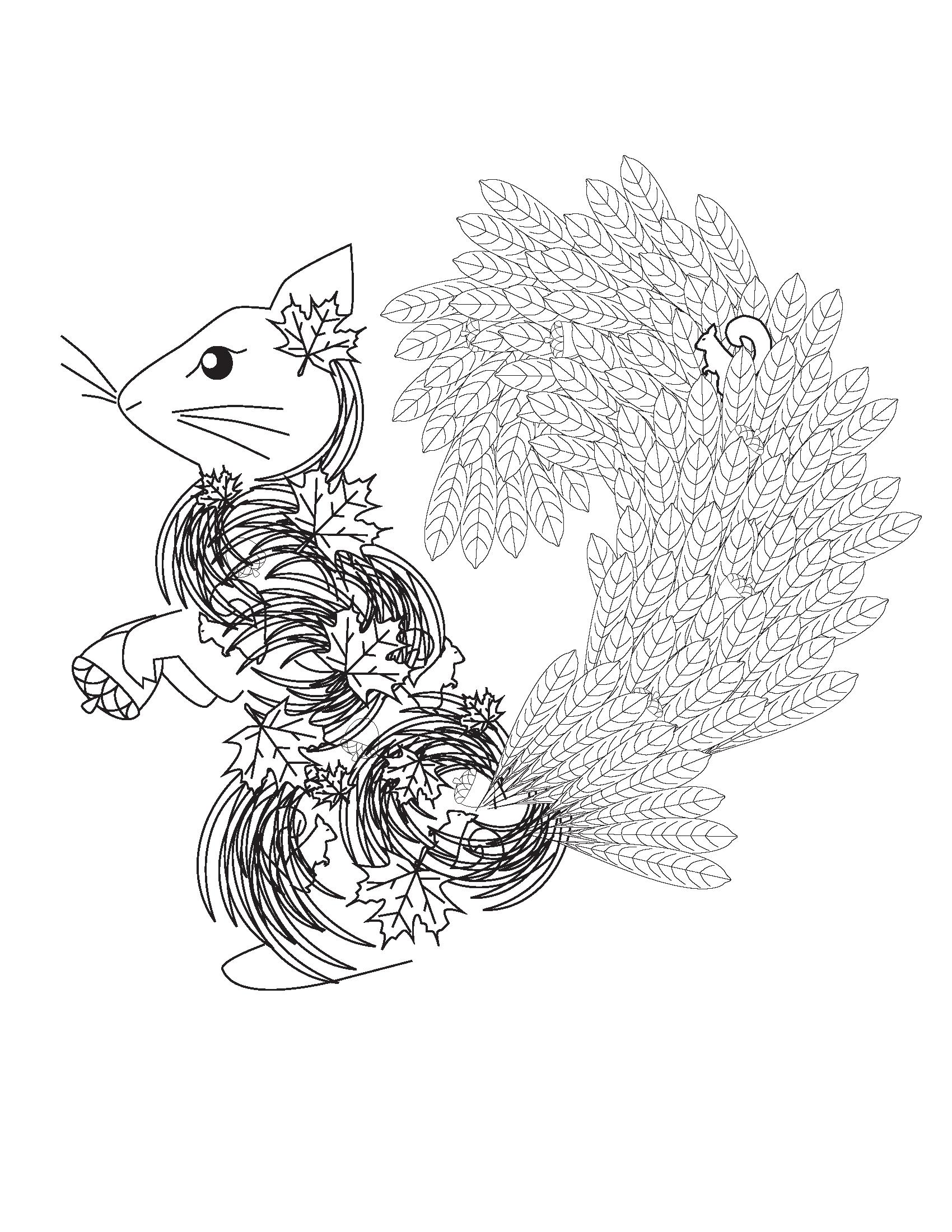 Squirrel Coloring Book page