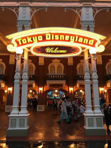 Tokyo Disney (Japan)