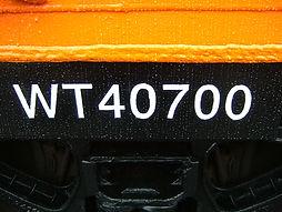 caboosemoveA 006.jpg