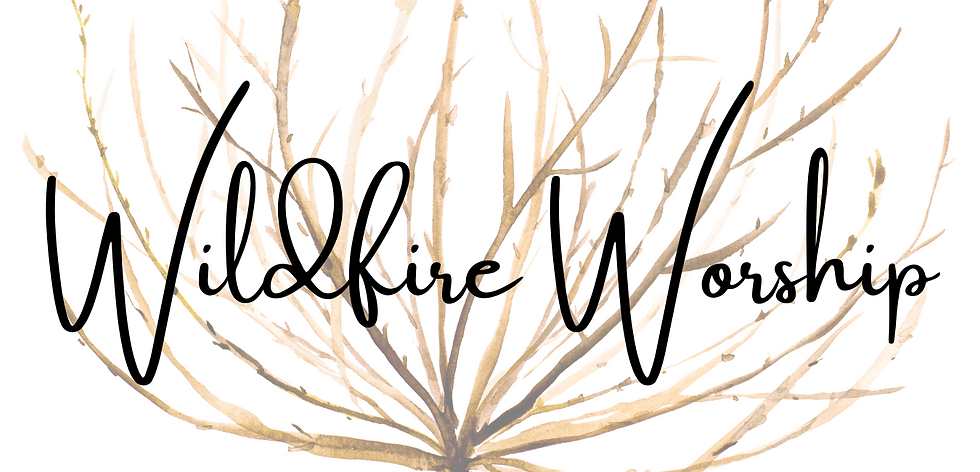Wildfire Worship Website Banner.png