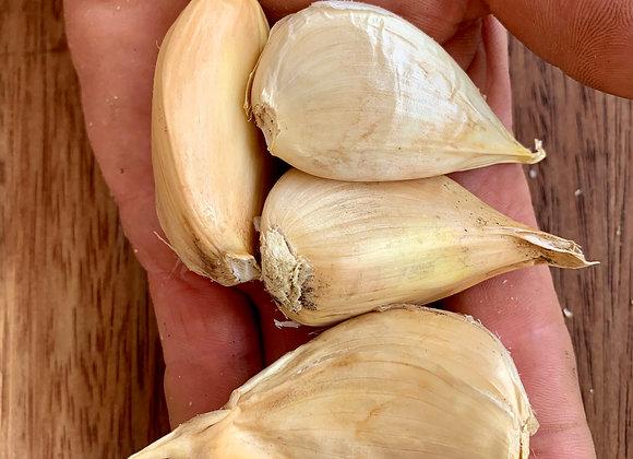Russian Garlic (Cloves)