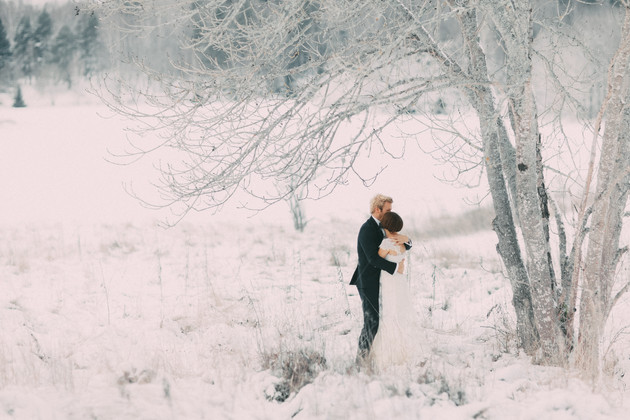 bröllopsfoto Örnsköldsvik träd