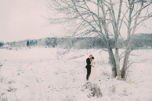 bröllopsfoto Umeå träd vinter