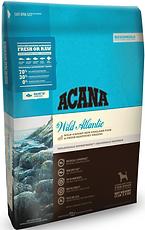 Wild Atlantic_edited.png
