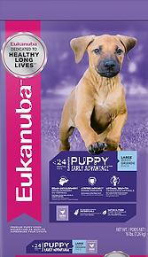 LB Puppy.png