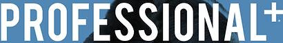 professional logo.svg.png