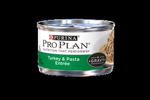 Turkey Pasta Entre in gravy.png