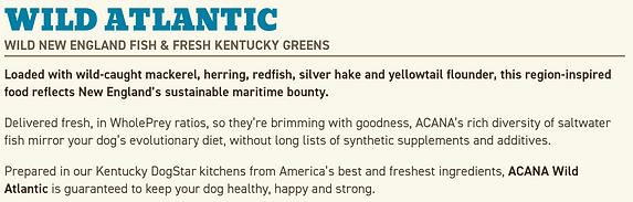 Wild Atlantic Info_edited.png