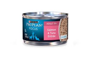 Senior Salmon Tuna.png