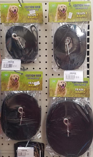 recall training leashes