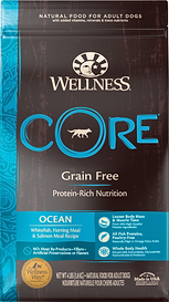 Wellness Core Ocean_edited.png