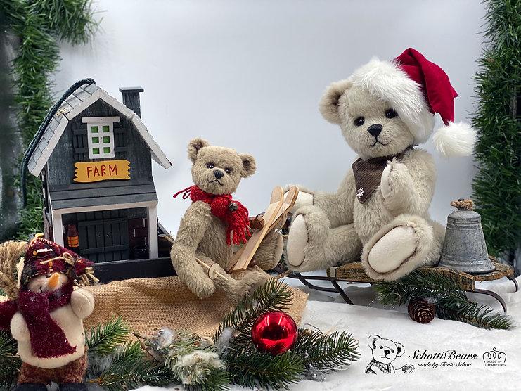 Teddy Weihnachten.jpg