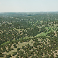 9,684 Acres