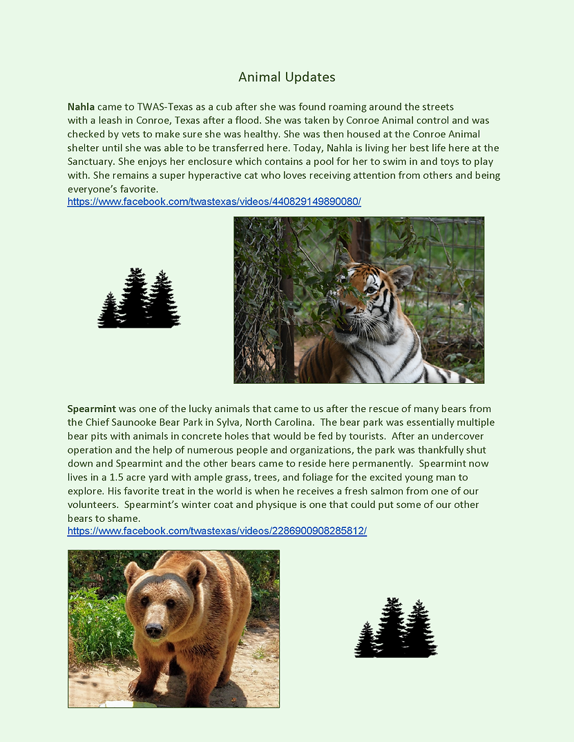 Pages from Newsletter 2020 Pat_Page_10.p