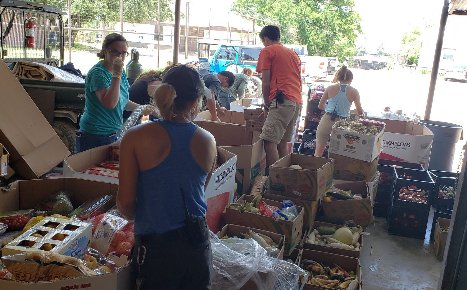 Staff Sorting Donated Food