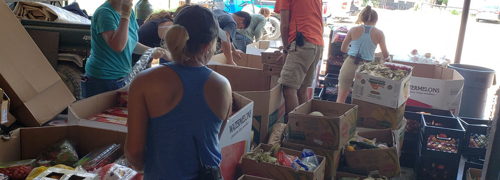Staff Sorting Donated Food