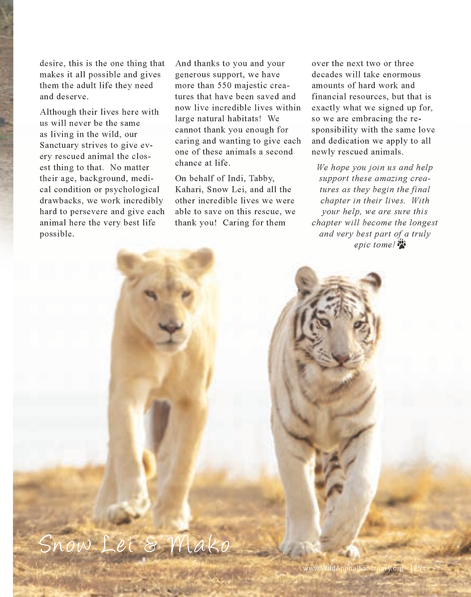 Wildlife In Need Rescue_Page_19.png