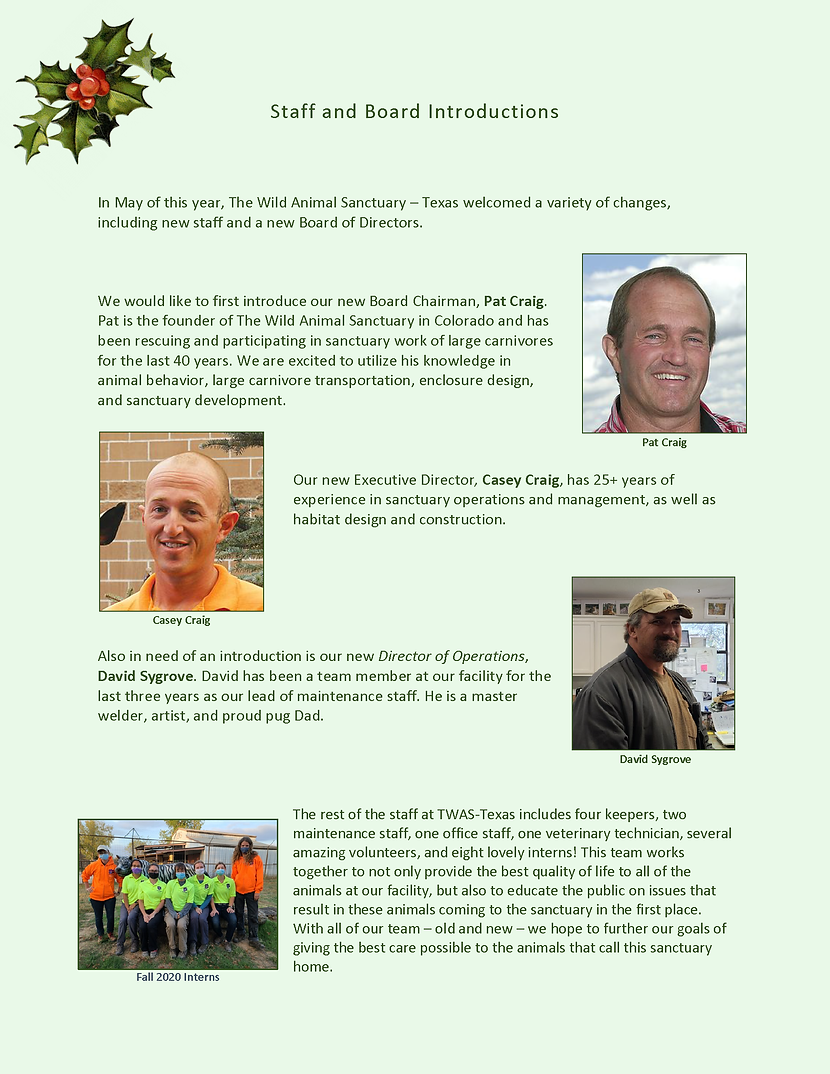 Pages from Newsletter 2020 Pat_Page_05.p