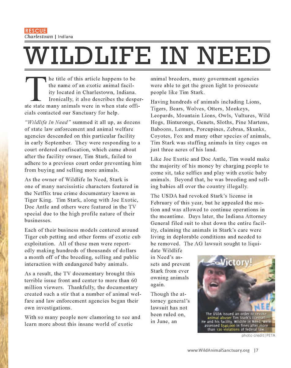 Wildlife In Need Rescue_Page_01.png