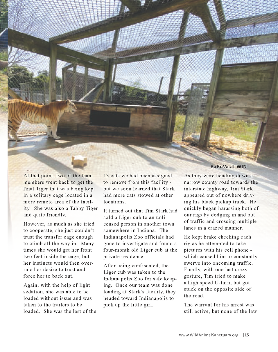 Wildlife In Need Rescue_Page_09.png