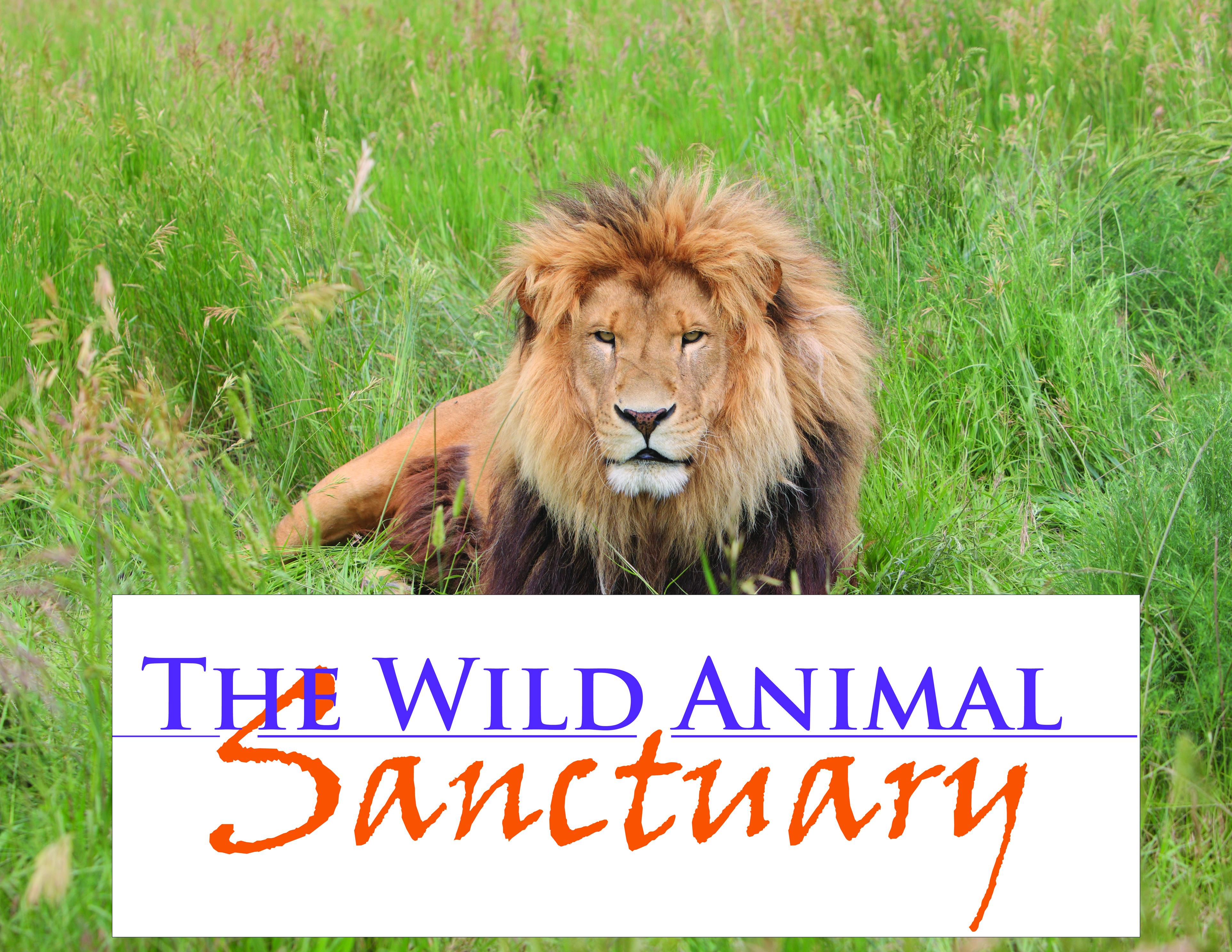 the wild animal sanctuary keenesburg co home