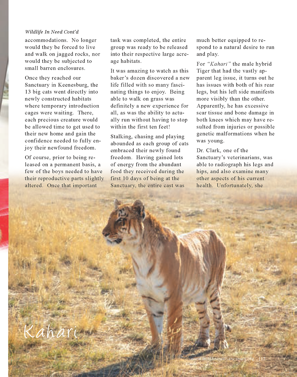 Wildlife In Need Rescue_Page_11.png