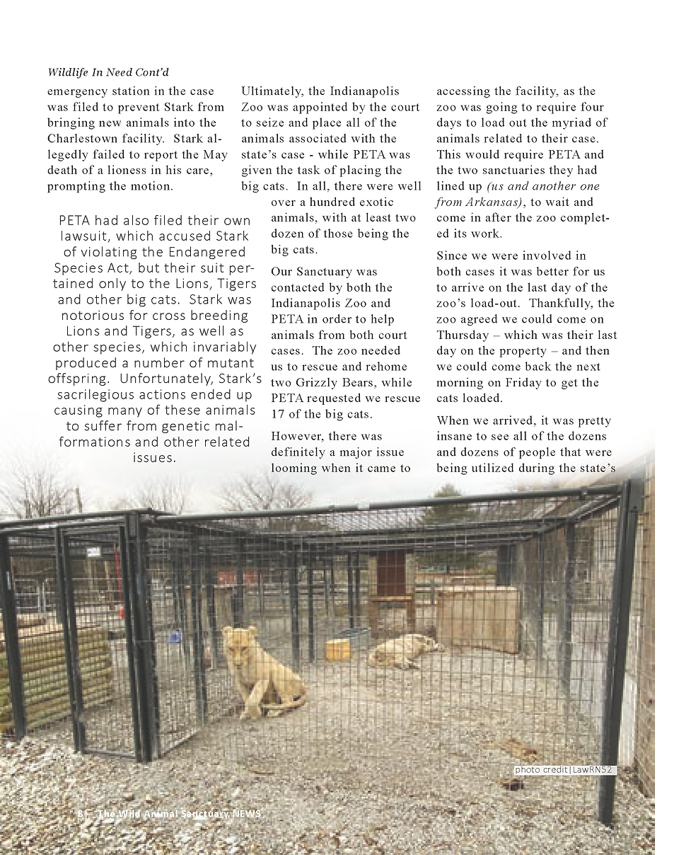 Wildlife In Need Rescue_Page_02.png