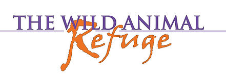 NEW REFUGE LOGO 5-2019 version.jpg