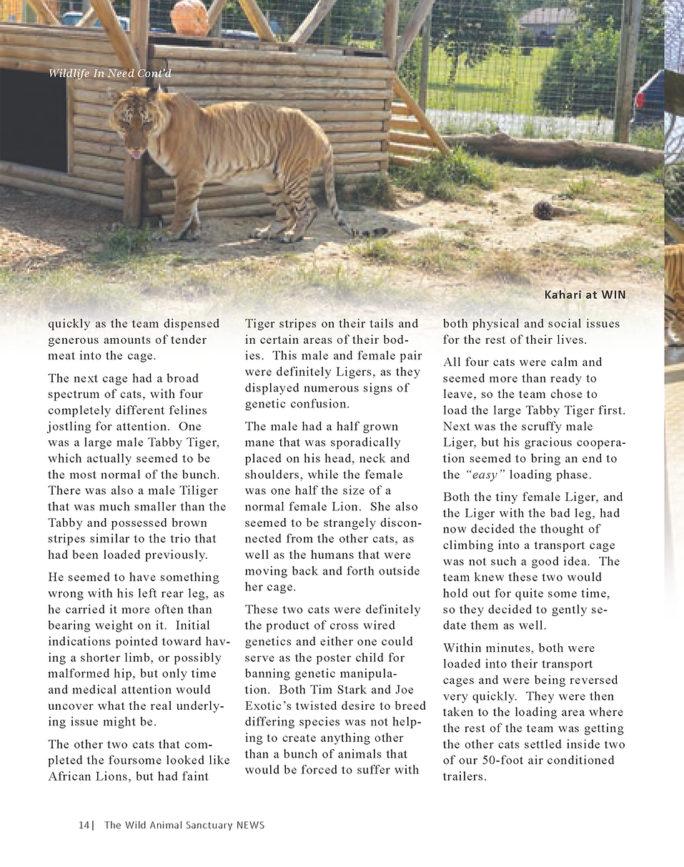 Wildlife In Need Rescue_Page_08.png