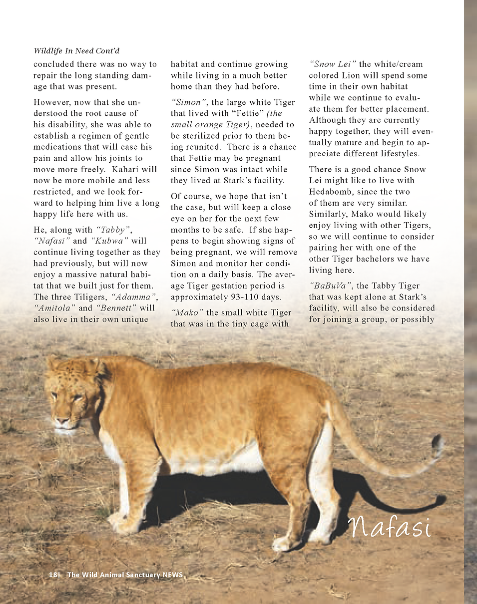 Wildlife In Need Rescue_Page_12.png