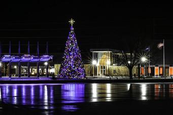 Firemans-park-Christmas-tree.jpg