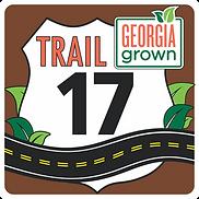 T17 Logo.png