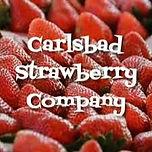 Carlsbad Strawberry Company.jpg
