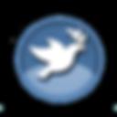Logo RtP.png
