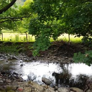 A stream near Pennant Melangell