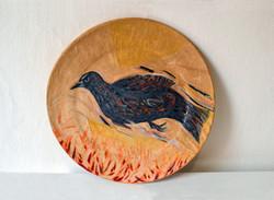 Bird Over Burning Fields, 2013