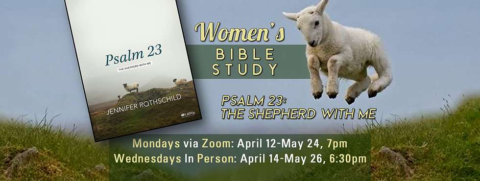 Womens_Bible_Study_Banner.png